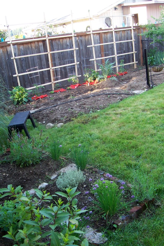 Raised Beds Gardening In My Rubber Boots