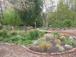 Dry creek bed & grass garden