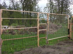 The first of MANY vertical trellises for veggies
