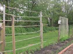 Vertical veggie garden trellises
