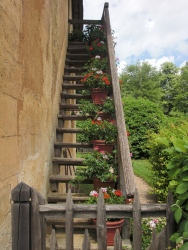 Potted stairway