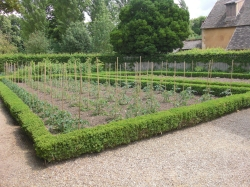 Formal veggie garden