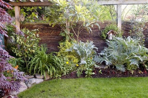 I m considering a composting fence gardening in my rubber boots - Garden ideas to hide fence ...